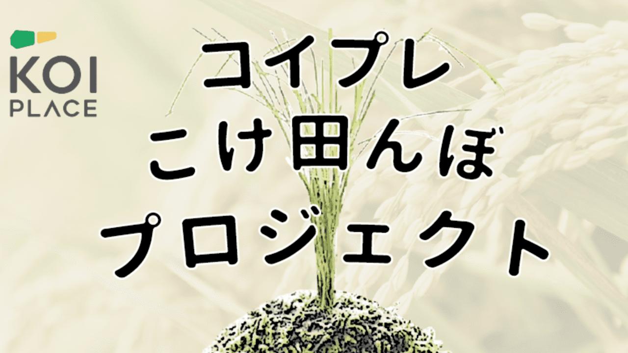 コイプレこけ田んぼプロジェクト